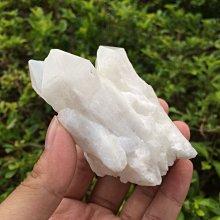 【小川堂】淨化 巴西 原礦(25) 正能量 純天然 清料 白水晶簇 鱷魚 骨幹 水晶 150.6g 附木座