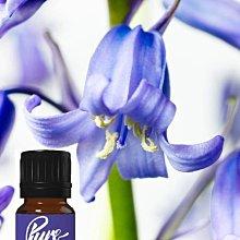 英國製造  10ml  野 藍風鈴花  (野風信子) 香精油   非台灣分裝 知名香水原料 原裝