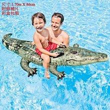 [現貨] 美國 INTEX 座騎泳圈 動物造型 兒童泳圈 泳具 浮具 (中號)