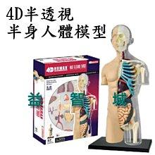 益智城《教學模型/器官模型/人體器官模型/DIY模型/人體模型/科學教具/4D MASTER 》4D半透視半身人體模型