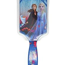 [任三免運]全新品 正版 Disney Frozen II Destiny 冰雪奇緣二*公主順髮㧧*100%美國原裝進口