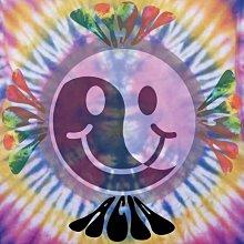免運費☯酸比利Tie Dye Hippie Peace T-shirt 手染嬉皮風格 迷幻 MDMA LSD DMT郵票