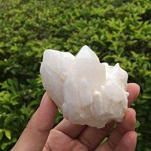 【小川堂】淨化 巴西 原礦(27) 正能量 純天然 清料 白水晶簇 鱷魚 骨幹 水晶 159.4g 附木座