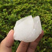 【小川堂】淨化 巴西 原礦(26) 正能量 純天然 清料 白水晶簇 鱷魚 骨幹 水晶 116.2g 附木座