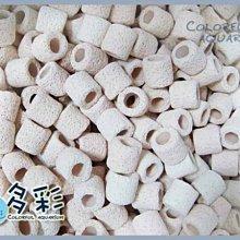 +►►多彩水族◄◄高級《生物培菌陶瓷環(S)散裝/ 3kg(約6.3L)》中性陶磁環濾材