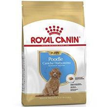 【寵物王國】法國皇家-PDP(PRPJ33)貴賓幼犬專用飼料3kg《5kg內可超取》