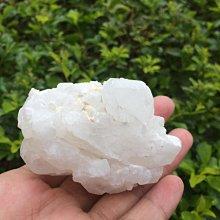 【小川堂】淨化 巴西 原礦(29) 正能量 純天然 清料 白水晶簇 鱷魚 骨幹 水晶 136.6g 附木座
