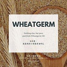 🌳Morene小麥胚芽油 Wheatgerm 250ML 高品質原料館 💯純天然無添加🚀快速發貨🌳