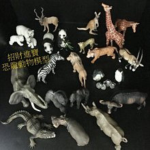 袋鼠(母)仿真動物玩具模型野生動物園 ZOO 公仔玩偶小孩生日禮物教育另有售獅子企鵝北極熊貓河馬大象猩猩鱷魚恐龍AM20