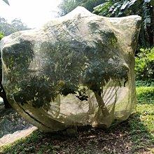 熊貓防蟲網~40網目超密長6*寬7*高5,防蟲網,網罩,防鳥網, 有機果樹必備,有它就不需噴農藥,不需要套袋防蟲了