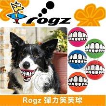 【🐱🐶培菓寵物48H出貨🐰🐹】美國 Rogz 》彈力益智笑笑球 特價199元