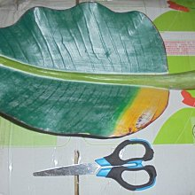 綠色葉子造型收納盤(塑料材質)  空間擺設藝術品 可放文具 , 餐具 ,小物...等  收納擺設品