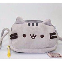 現貨特價中?pusheen cat 胖吉貓筆袋零錢袋化妝包卡通韓版手包灰色包包收納包隨手可愛貓咪