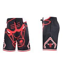 籃球褲 運動短褲 NBA 公牛隊 喬丹 口袋 透氣 排汗 吸濕 健身 訓練