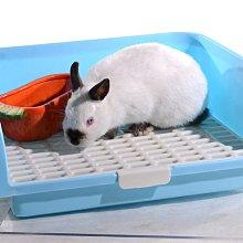 🦔刺兔萌🐰兔子天竺鼠超大便盆方形廁所 大屁屁防噴尿塑膠高檔板 大白兔寵物兔迷你兔角落型尿盆 現貨-A1040001