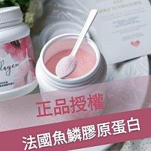 現貨🌻正品授權🌻日喬恩MIT🐬膠原胜肽級100%魚鱗膠原蛋白粉 蔓越莓口味