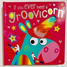 全新 現貨 If You Meet a Groovicorn 觸摸書