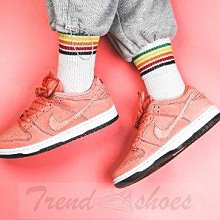Nike SB DUNK Low 經典 復古 低幫 百搭 粉色 休閒 運動 滑板鞋 CV1655-600 男女鞋