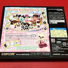 ㊣大和魂電玩㊣任天堂NDS遊戲 偶像小狗 音樂頻道隨身時尚 {日版}編號:I2---2DS 3DS 主機可玩
