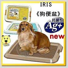 【🐱🐶培菓寵物48H出貨🐰🐹】IRIS《網狀抗菌》狗便盆TFT-650  特價529元送玩具