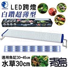 Y。。。青島水族。。。YX-30台灣paopaozone泡泡龍-白鑽超薄型LED跨燈 白光 全白燈==水草30cm