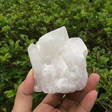 【小川堂】淨化 巴西 原礦(46) 正能量 純天然 清料 白水晶簇 鱷魚 骨幹 水晶 281g 附木座