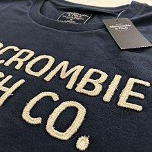 Abercrombie and Fitch A&F 男生M號 深藍色刺繡短T 全新正品 官網新款