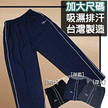 加大尺碼 台灣製 平口運動長褲 吸濕排汗 雙線條滾邊(310-7336-08)藍(22)灰(21)黑 3~5Lsun-e