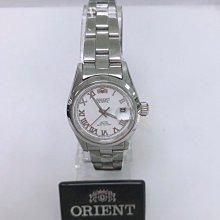 可議價 ORIENT東方錶 女 簡約羅馬數字 石英腕錶 (HE71K06)