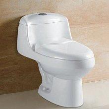台中興大水電衛浴設備-台灣DSKY龍天下高背型單體馬桶cs853/cs854整組含所有配件