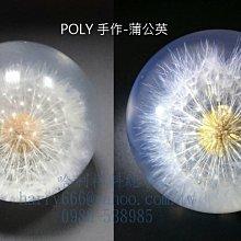 GC-0421保力膠(4KG組) POLY, 不飽和聚酯(透明注型樹脂)- 哈利材料總會