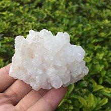 【小川堂】淨化 巴西 原礦(19) 正能量 純天然 清料 白水晶簇 鱷魚 骨幹 水晶 98.2g 附木座