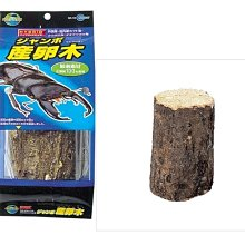 N-WI-10 微笑的魚水族☆【甲蟲】日本Marukan【WI-10 巨大蟲用產卵木】甲蟲土