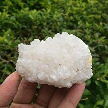 【小川堂】淨化 巴西 原礦(47) 正能量 純天然 清料 白水晶簇 鱷魚 骨幹 水晶 119.5g 附木座
