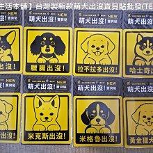 【佳樺生活本舖】台灣製新款萌犬出沒寶貝貼(TE-20)可愛動物狗狗寵物貼紙批發客製/療癒小物
