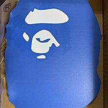 ARENA × BAPE KICK BOARD 大猿人頭浮板 現貨