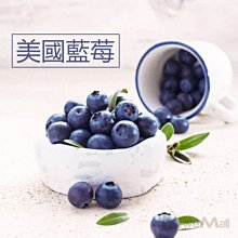 美國藍莓一箱(12盒x125g)約1.5公斤 進口新鮮宅配到府