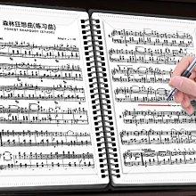 【老羊樂器店】不反光 20頁 40面 A4 資料簿 曲譜本 樂譜夾 鋼琴樂譜 文件夾