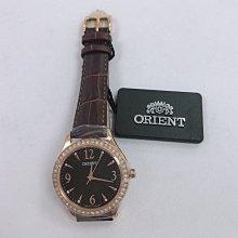 可議價 ORIENT東方錶 女 皮帶時尚黑面 腕錶 (FQC100047)