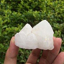 【小川堂】淨化 巴西 原礦(41) 正能量 純天然 清料 白水晶簇 鱷魚 骨幹 水晶 115.6g 附木座