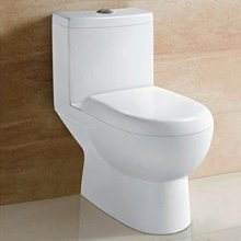 台中興大水電衛浴設備-台灣DSKY龍天下單體馬桶cs863/cs864整組含所有配件