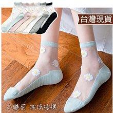 台灣出貨!小雛菊 玻璃短絲襪 夏天女生透明襪 透膚襪子水晶襪 涼感襪蕾絲襪 短襪長襪 韓國薄款透膚絲襪|大J襪庫G-63