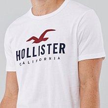 Hollister 男生白色短袖T恤 拼布刺繡圖案 全新正品 現貨在台 M號(80公斤可穿)