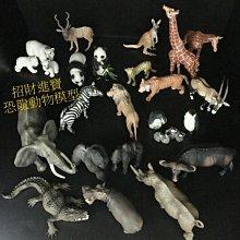 旋角羚羊 仿真動物玩具模型野生動物園 ZOO 公仔玩偶小孩生日禮物說故事另有售斑馬企鵝熊貓河馬獅子大象長頸鹿恐龍AM15