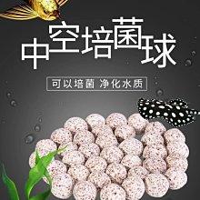 台北►►多彩水族◄◄嚴選《頂級 奈米中空培菌球 / 20(kg)》石英球、礦物球,高效培養硝化菌,陶瓷環,媲美EHEIM