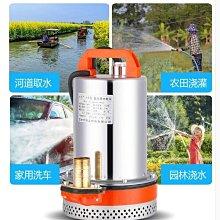 24v直流潛水泵12v48v伏電瓶車小型抽水泵電動車農用灌溉抽水機 全館免運 全館免運