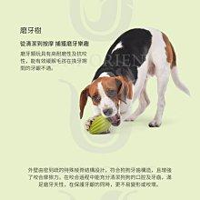 【寵物王國】【佩奇】寵物森林玩具/忘憂樹S