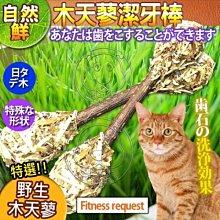 【🐱🐶培菓寵物48H出貨🐰🐹】自然鮮系列》木天蓼潔牙棒貓玩具NF-014 特價79元