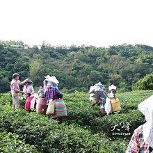 【裸包】大峰有機茶園-台東特級手採有機紅烏龍茶-----600元150公克