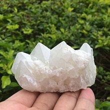 【小川堂】淨化 巴西 原礦(28) 正能量 純天然 清料 白水晶簇 鱷魚 骨幹 水晶 152.2g 附木座